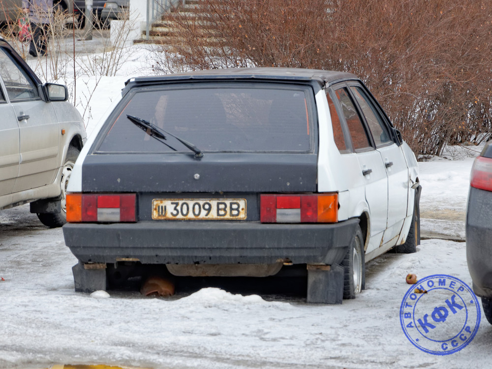 ш3009ВВ